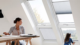 verrieres-planes-velux-securite